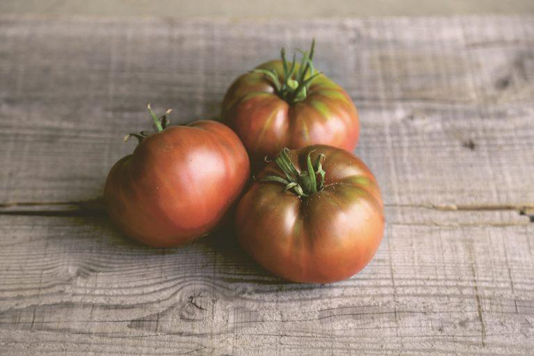 tomate ancienne ferme de sainte Marthe semences paysannes